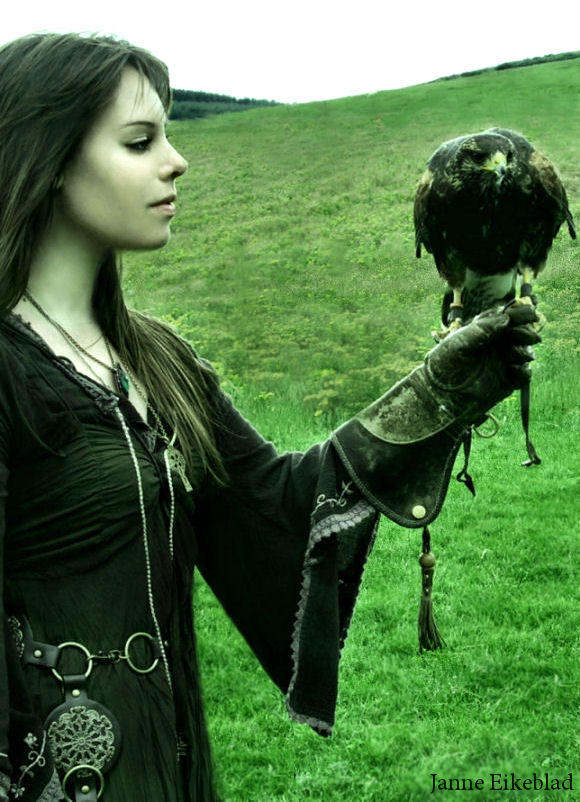 Falcon's Eye by Navanna