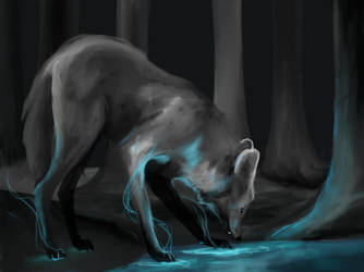 concept 4 by happymoonwolf