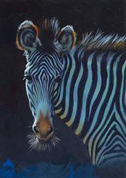 Grevy Zebra - Zebulon by IngridKVHardy