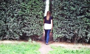 Der enge Weg - the narrow path by HeidiK1