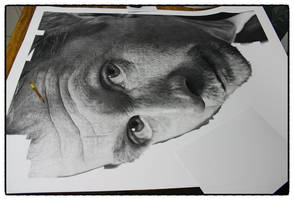 Gary Oldman drawing wip(3) by sharppower