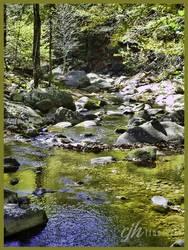 Rapidan River, Virginia by cjheery