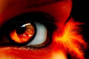 Pheonix's Fire by Onyx-Tigeress