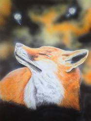 Fox by martoo1973