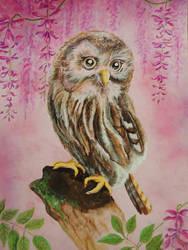 Owlwystheriasml by martoo1973