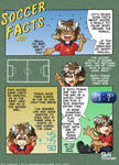 Soccer Facts - 01 by skifi