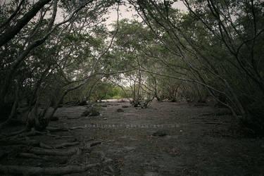Dead Swamp by RoadioArts