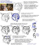 My Approach to Animal Expressions... by teagangavet