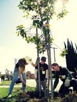 dA Earth Day 004 by kyle-culver
