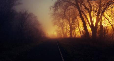 foggy nights by BrianWolfe