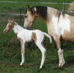 Mom and me by linka064