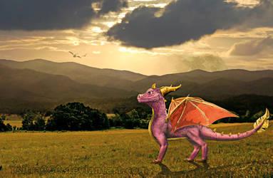 The Real Spyro by Tsitra360