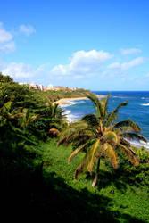 Puerto Rico by djozidjoz