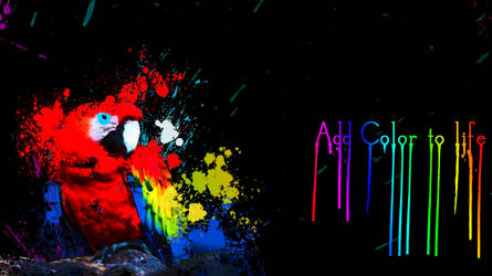 Colorful parrot in paint splash by ShiftgraphiX