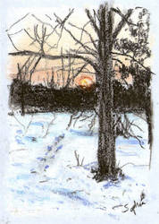 Winter sunset by sophelia