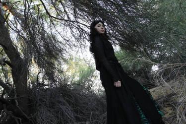 Merlin - The Darkling Forest by SuperWeaselPrincess