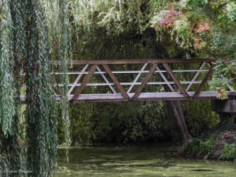 Le pont by FabienBertham