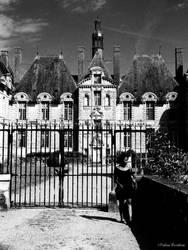 Castle by FabienBertham