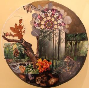 NaturesMate's Profile Picture