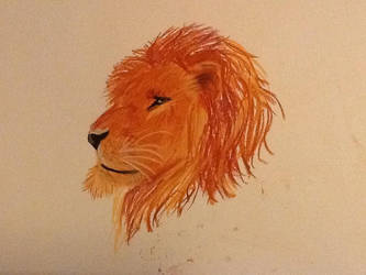 Lion by deathnote2105