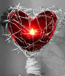 Cradled Heart by tamaiyoku