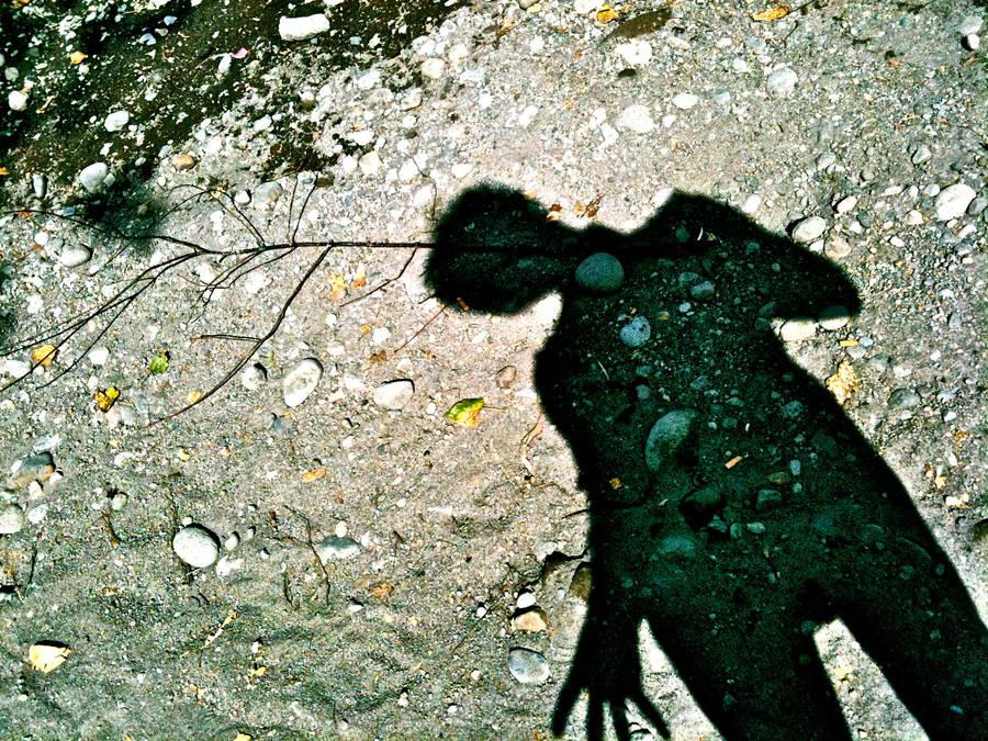 Shadow BeeCreek by J-Micah-Nelson