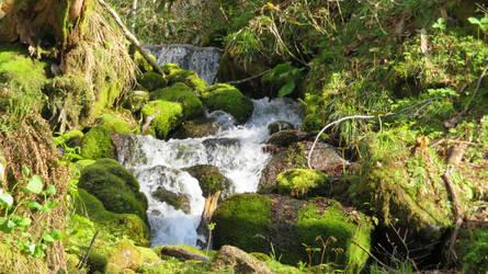 Towada-Hachimantai National Park in Japan III by anjicle