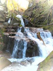 Waterfall and Log - N.Japan by anjicle