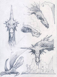 Sketches of Dragons by salasius