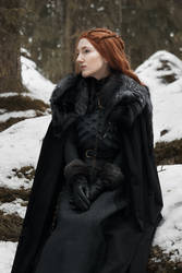Lady of Winterfell by cuppacoffeeplease