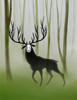 No Face on the Forest by Nenufarblanco