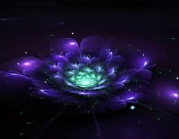 Fractal Flower 1.0 by CryoGfx