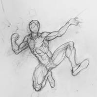 Spiderman anatomy study by ProfessorPicasso