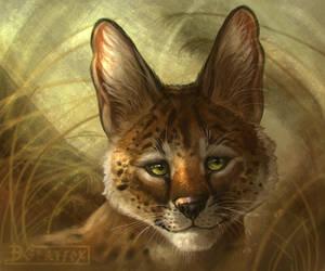 Serval by DGrayfox