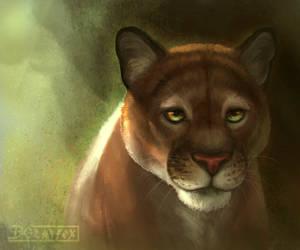 Puma by DGrayfox