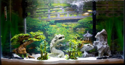home fish aquarium 2014 by evilhedgehog2011