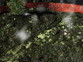 terrain vert rendu rater by evin279