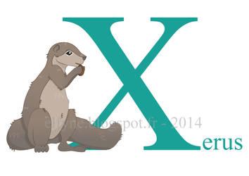 Xerus by ElfyneInWonderland