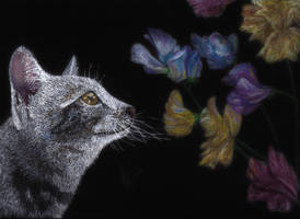 Cat With Flowers by lonely-wolf-22