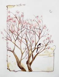 magpie spring by chibighibli