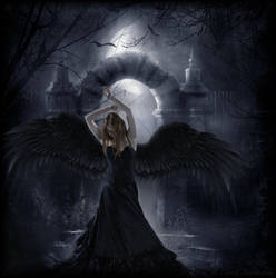 Dark Angel by Navratin