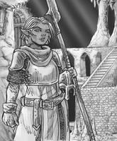 Negeemi Drow Mercenary by Shabazik