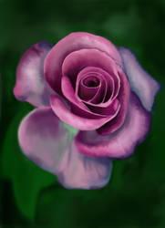 Purple flower by Veeroniquee