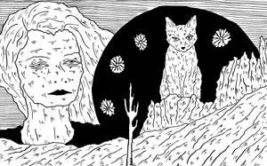 Desert Cat by AllieHartley