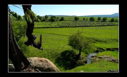 Panoramic Piedrotas by zerreitug
