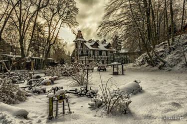 The winter landscape by wiwaldi24