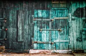 The door by wiwaldi24