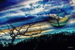 Photomanipulation nr 10 by wiwaldi24