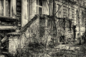 The Old stairs by wiwaldi24