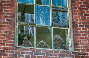 Ruder, bricks, window and three big .... he, he. by wiwaldi24